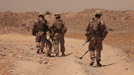 Marines-On-Patrol-In-Afghanistan-Use-Bomb-Sniffing-Dogs-To-Detect-Ieds-2