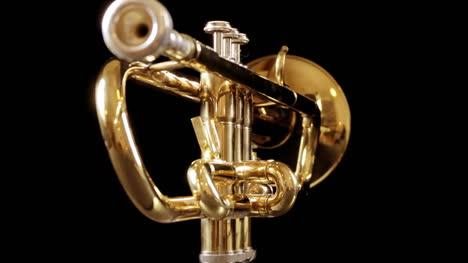 Trumpet-01