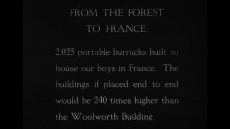 Forestry-Develops-In-America-In-1918