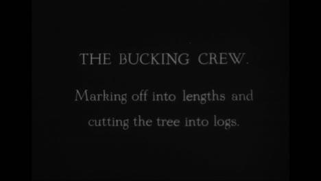 Forestry-Develops-In-America-In-1918-1