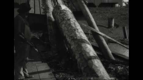 La-Silvicultura-Se-Desarrolla-En-América-En-1918-El-Aserradero-En-Acción