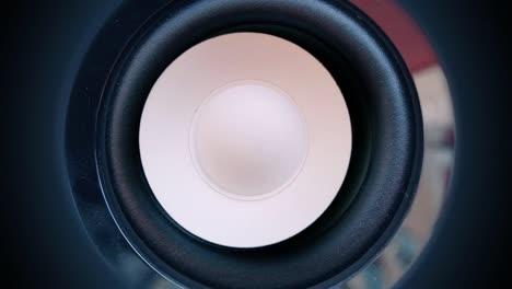 White-Speaker5
