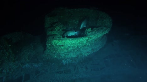 Noaa-Explores-Two-Recently-Discovered-World-War-Ii-Shipwrecks-Off-The-Coast-Of-North-Carolina-2016