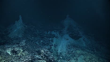 Discovery-Of-The-Chamorro-Vent-In-The-Mariana-Trench-2016