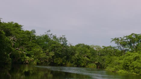 The-camera-moves-down-a-river-that-passes-by-the-Lamanai-Mayan-ruins-of-Belize-1