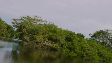 The-camera-moves-down-a-river-that-passes-by-the-Lamanai-Mayan-ruins-of-Belize-2