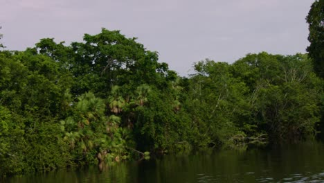 The-camera-moves-down-a-river-that-passes-by-the-Lamanai-Mayan-ruins-of-Belize-3