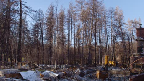Establishing-shots-of-the-destruction-of-Paradise-California-following-the-Camp-Fire-10