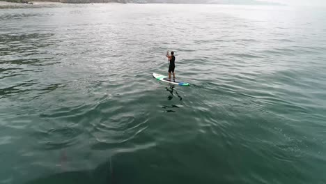 Aerial-Over-Dolphins-Swimming-With-A-Paddleboarder-In-The-Ocean-Near-Malibu-California