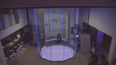Indoor-Wind-Tunnel-Skydiving-Is-A-Futuristic-Action-Adventure-Sport-4