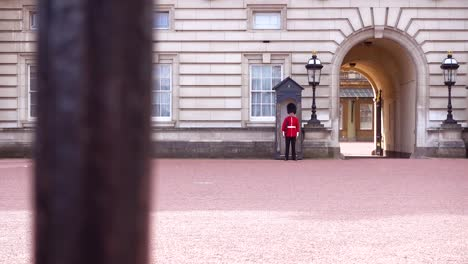 Walking-Along-Buckingham-Palace-Gate-With-Palace-Guards-In-Distance