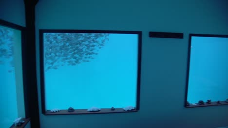 Pov-Shot-Of-A-Bedroom-In-An-Underwater-Hotel-Looking-At-Fish-Swimming-By-From-Window-Tanzania-Africa