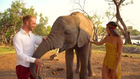 Un-Hombre-Y-Una-Mujer-Turista-Alimentan-A-Un-Elefante-Domesticado-En-Zambia-Africa-Wildlife-Park
