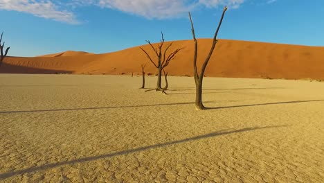 Moving-shot-through-the-Sossusvlei-dead-trees-and-sand-dunes-in-Namibia-Africa