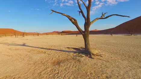 Moving-shot-through-the-Sossusvlei-dead-trees-and-sand-dunes-in-Namibia-Africa-1