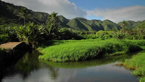 Pan-across-a-Hawaiian-jungle-landscape-with-canyons-and-small-lake