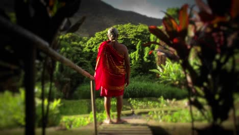 A-native-Hawaiian-stands-looking-out-at-his-land