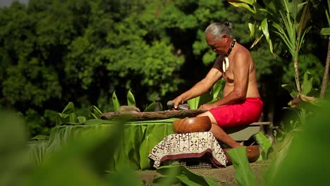A-Hawaiian-native-prepares-tarot-root-with-his-hands-1