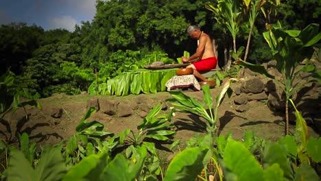 A-Hawaiian-native-prepares-tarot-root-with-his-hands-2