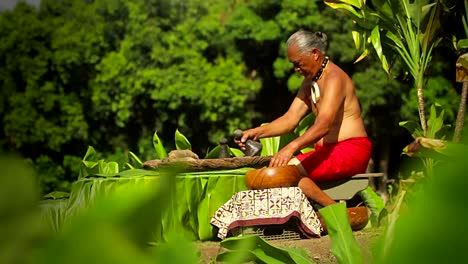 A-Hawaiian-native-prepares-tarot-root-with-his-hands-4