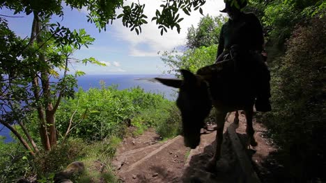 People-ride-horses-along-a-narrow-trail-in-Hawaii-1