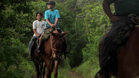 People-ride-horses-along-a-narrow-trail-in-Hawaii-3