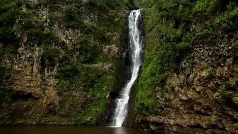 Una-Pequeña-Cascada-Tropical-En-Un-Entorno-Selvático