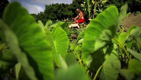 Un-Nativo-Hawaiano-Se-Sienta-En-El-Campo-Haciendo-Poi