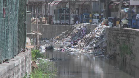 Dogs-walk-through-garbage-that-has-been-dumped-over-a-wall