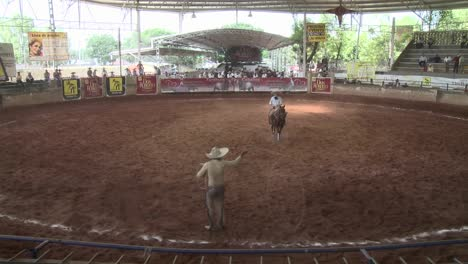 A-Mexican-cowboy-lassos-a-horse-with-a-rope-and-then-stop-the-horse-s-gallop