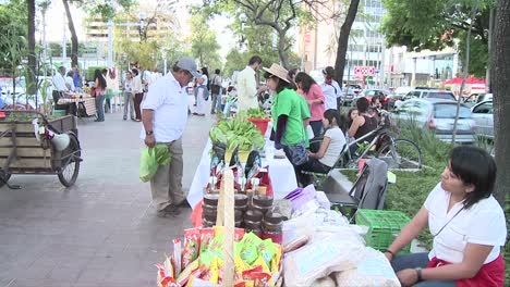 People-on-the-middle-of-an-avenue-in-an-organic-market-Stands-selling-ecoproducts-in-Chapultepec-Avenue-Guadalajara-Mexico