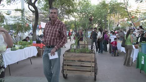 People-on-the-middle-of-an-avenue-in-an-organic-market-moving-around-an-organic-agriculture