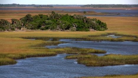A-salt-marsh-near-St-Augustine-Florida