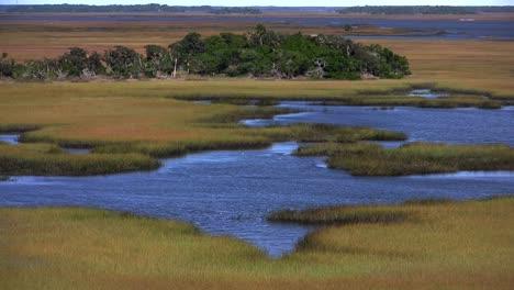 A-salt-marsh-near-St-Augustine-Florida-1