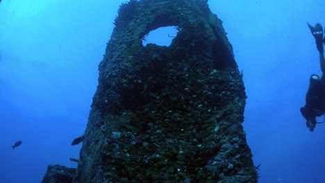 A-diver-swims-around-a-shipwreck-from-a-low-angle