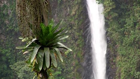 Schöner-Wasserfall-In-Der-Nähe-Von-Fortuna-Costa-Rica-5