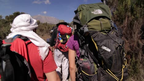Trekkers-headed-down-the-trail-towards-Kilimanjaro