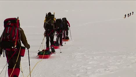 Climbers-with-snowshoes-and-sleds-headed-up