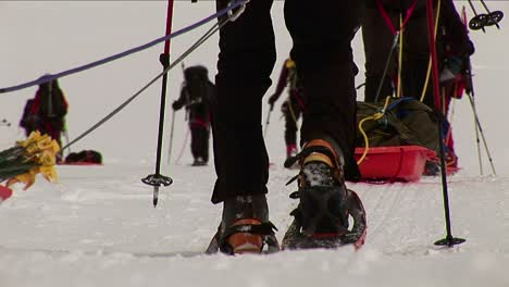 Closeup-of-sleds-and-snowshoes