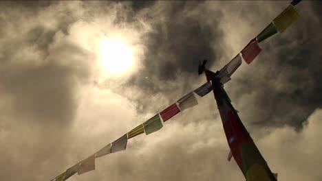 Bird-standing-atop-prayer-flags
