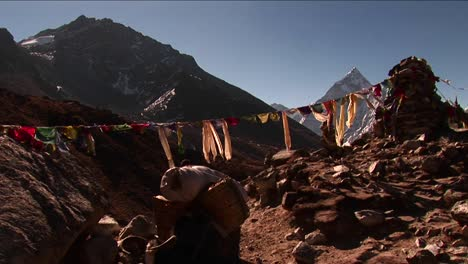 Yak-passing-under-prayer-flags-and-chorten