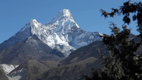 Glide-of-Ama-Dablam-from-behind-trees