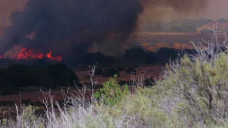 A-Massive-Southern-California-Wildfire-Burns-In-Chaparral