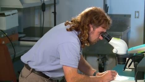Un-Científico-Médico-En-Un-Laboratorio-Estudia-La-Malaria