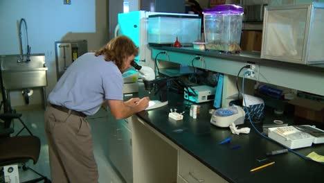 Un-Científico-Médico-En-Un-Laboratorio-Estudia-La-Malaria-2