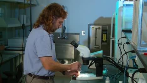 A-Medical-Scientist-In-A-Lab-Studies-Malaria-5