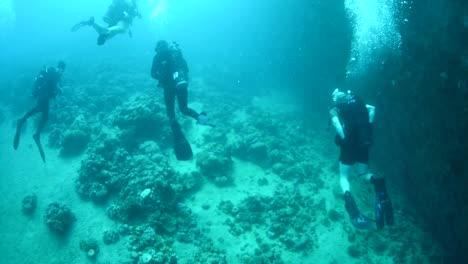 Los-Buzos-Nadan-Alrededor-De-Los-Arrecifes-De-Coral-