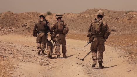 Marines-On-Patrol-In-Afghanistan-Use-Bomb-Sniffing-Dogs-To-Detect-Ieds-3