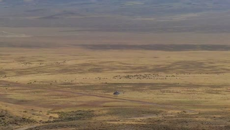Wild-Horses-Are-Rounded-Up-By-Helicopter