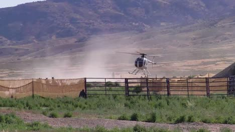 Wild-Horses-Are-Rounded-Up-By-Helicopter-1